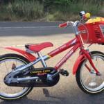 5歳の子供が15分で自転車に乗れた秘訣とコツ!