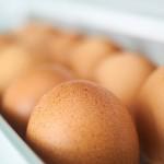 egg-2728995__480