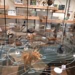 ふじのくに地球環境史ミュージアムは赤ちゃんから楽しく学べると口コミで話題