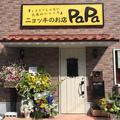 静岡市ランチにおすすめ 手作りニョッキ・生パスタの人気店PaPaに行ってきた!