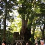 熱海観光地で人気の来宮神社は子どもも楽しめる?行った感想を口コミ