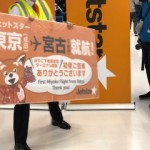 宮古島下地島空港ー成田空港LCCジェットスター初就航便に乗ってみた!